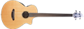 Breedlove Solo  Unlined/Fretless  4-String Acoustic Electric Bass Guitar