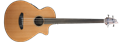 Breedlove  Solo Jumbo Fretless CE Red Cedar  4-String Acoustic Electric Bass Guitar