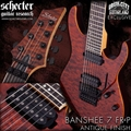 Schecter   DIAMOND SERIES DCGL EXCLUSIVE  Banshee-7FR Passive Antique Amber    7-String Electric Guitar