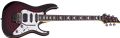Schecter DIAMOND SERIES Banshee Extreme-6FR Black Cherry  Burst 6-String Electric Guitar