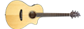 Breedlove Discovery Concert CE   6-String Acoustic Electric Guitar