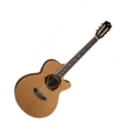 Luna Dolphin Nylon  6-String Acoustic Electric Guitar