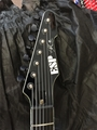 ESP  Custom Ordered Signature Series Stef/Deftones T-7 Black   7-String Electric Guitar