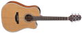 Takamine  GD20CE  Natural Satin  6-String Acoustic Electric Guitar