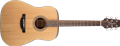 Takamine GD20-NS  Natural Satin  6-String Acoustic Guitar