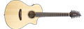 Breedlove Pursuit  Concert-12 CE  12-String Acoustic Electric Guitar