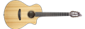 Breedlove Pursuit Concert Nylon CE 6-String Classical Acoustic Electric Guitar