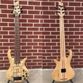 Schecter USA Custom Shop Masterworks Custom Riot-6 Buckeye Burl  4-String Electric Bass Guitar
