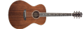 Breedlove    Stage Concerto-E    6-String Acoustic Electric Guitar