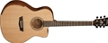 Washburn WCG15CE Comfort Series 6-String Acoustic Electric Guitar