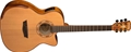 Washburn Comfort Series  WCG66SCE 6-String Acoustic Electric Guitar