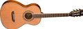 Washburn Parlor Series WP11SNS 6-String Acoustic Guitar
