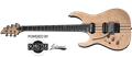 Schecter DIAMOND SERIES BANSHEE ELITE-6 FR/S Gloss Natural  Left Handed  6-String Electric Guitar