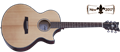Schecter    DIAMOND SERIES Orleans Stage Natural Satin Top/VRS Back   6-String Acoustic Electric Guitar