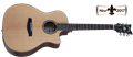 Schecter  DIAMOND SERIES Orleans Studio Natural Satin Top   6-String Acoustic Electric Guitar