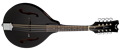 Dean Tennessee    Classic Black Acoustic/Electric Mandolin