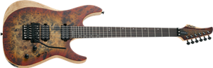 Schecter DIAMOND SERIES Reaper-6 FR  Satin Inferno Burst 6-String Electric Guitar 2019
