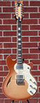 Schecter   DIAMOND SERIES TSH-12 Classic Vintage Natural Burst 2013   12-String Electric  Guitar